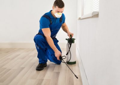 pest control services img 2